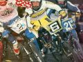 1981 JAG_BMX_Tim_Judge_scannen0065